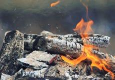 与白灰和红色火焰的灼烧的煤炭 图库摄影