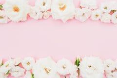 与白玫瑰的花卉框架在桃红色背景 平的位置,顶视图 抽象背景分数维图象柔和的淡色彩 库存图片