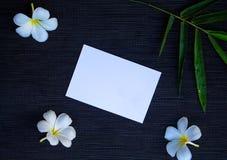 与白皮书和绿色竹子的平的位置 空白的白色明信片大模型 免版税库存图片