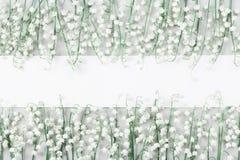 与白皮书空白和铃兰的婚礼大模型在轻的台式视图开花 美好的花卉模式 平的位置 免版税库存图片