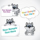 与白纸横幅的滑稽的动画片浣熊 免版税图库摄影
