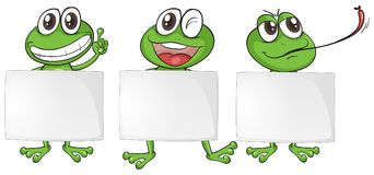 与白纸的三只青蛙 库存例证