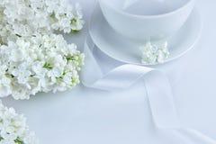与白色丝带的白色丁香在早晨 图库摄影