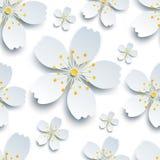 与白色佐仓花的时髦的无缝的样式 图库摄影