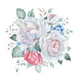 与白色和桃红色玫瑰和勿忘草花的水彩百花香 免版税图库摄影