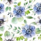 与白色和紫罗兰色银莲花属的无缝的样式 向量例证