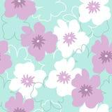 与白色和紫色花的无缝的样式在绿松石背景 图库摄影