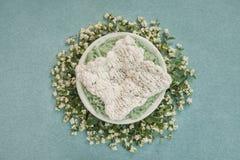 与白色地毯的巢新出生的照片写真的,装饰用小树枝用白色莓果 库存图片