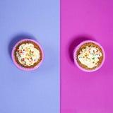 与白色奶油的杯形蛋糕在桃红色和蓝色背景, 免版税库存照片
