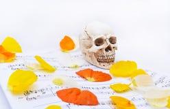 与白色小头骨的秋天纹理 免版税图库摄影