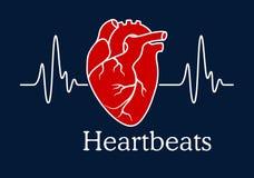 与白色心跳心电图的人的心脏 皇族释放例证