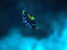 与白色斑点的小蓝色鱼在深海 库存图片
