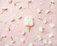 与白色毛茛的奶蛋烘饼锥体开花在浅粉红色的背景 免版税库存图片