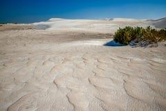 与白色沙丘的色的沙丘领域 库存照片