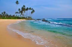 与白色沙子和棕榈树的海滩 免版税库存图片