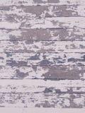 与白色油漆的脏的困厄的木地板纹理 库存照片