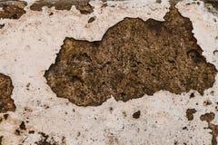 与白色油漆遗骸的老混凝土墙纹理  损坏的c 免版税库存照片