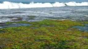 与白色泡沫的巨大的海浪在夏天慢动作 影视素材