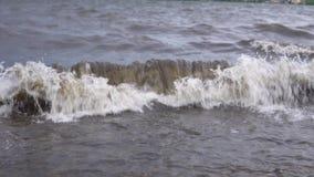 与白色泡沫的肮脏的波浪运载垃圾对岸在风暴以后 股票视频