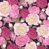 与白色牡丹,桃红色和绯红色玫瑰的花卉无缝的样式 免版税库存照片