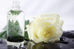 与白色玫瑰和石头的好的wellnes射击 免版税库存照片