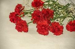与白色的大红色康乃馨烘干了在用一块精美布料盖的桌上的小花 库存照片