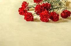 与白色的明亮的红色康乃馨烘干了在桌上的小花 库存图片