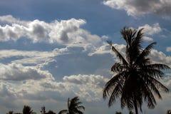 与白色的蓝天覆盖系列15 免版税图库摄影