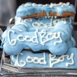 与白色的质量装饰蓝色狗款待措辞好男孩 免版税库存图片