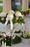 与白色蜡烛的出现花圈在云杉的分支 免版税图库摄影