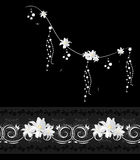 与白色郁金香的装饰元素在黑背景 免版税库存照片
