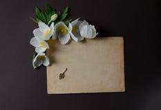 与白色银莲花属花的浪漫布局和文本的emty卡片在黑背景 库存照片