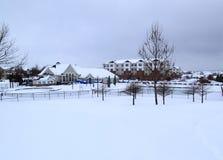 与白色雪的冬天风景 免版税库存图片