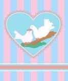 与白色鸠动画片夫妇的卡片在爱的 免版税库存照片