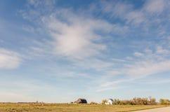 与白色,蓬松,嫩积云,黄色领域的蓝天 免版税库存照片