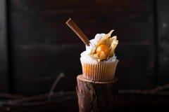 与白色黄油奶油的巧克力杯形蛋糕,装饰用在黑暗的木背景的酸浆 装饰用stic的桂香 库存图片