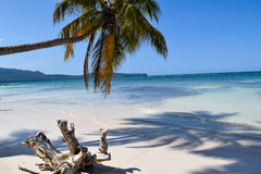 与白色snad的梦想海滩在加勒比 免版税库存照片