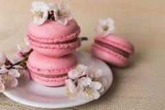 与白花分支的桃红色蛋白杏仁饼干在一块白色板材的 库存照片