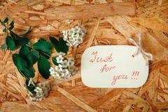 与白花和绿色叶子的小黄色愿望卡片在纹理木背景 免版税图库摄影