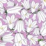 与白花的无缝的纹理 库存照片