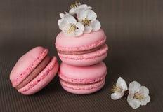 与白花的桃红色蛋白杏仁饼干 免版税库存照片