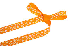 与白花的橙色礼物弓 免版税库存照片