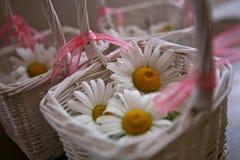 与白花的白色篮子 免版税库存照片