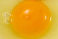 与白蛋白的卵黄质 库存照片