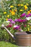 与百合的五颜六色的花床 库存图片