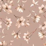 与的英国兰开斯特家族族徽的抽象无缝的花卉样式和在黑背景的桃红色和蓝色小苍兰 免版税库存照片