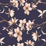 与的英国兰开斯特家族族徽的抽象无缝的花卉样式和在黑背景的桃红色和蓝色小苍兰 库存图片