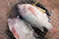 与盐的烤鱼在木炭火炉 库存照片