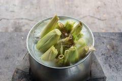 与盐的甜玉米煮沸 在罐的煮熟的甜玉米 免版税库存照片