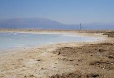 与盐水晶的死海海岸 免版税图库摄影